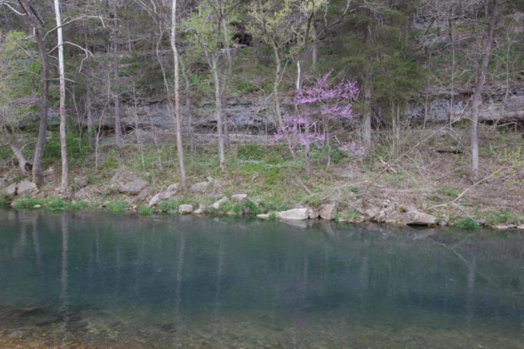 Roaring River State Park Great Missouri Birding Trail