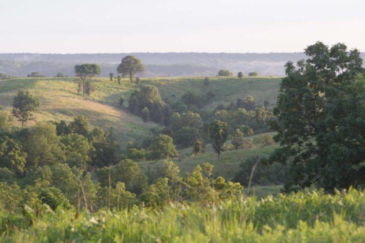 Scenic photos of Union Ridge Conservation Area near Kirksville.