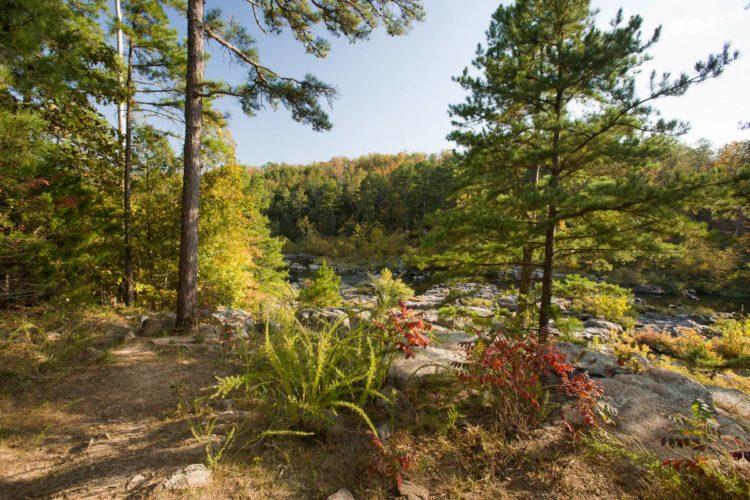 Millstream Gardens Conservation Area Great Missouri Birding Trail